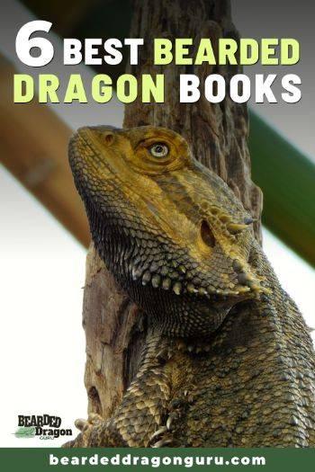 bearded dragon books