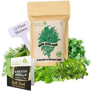 herbs for a bearded dragon tank