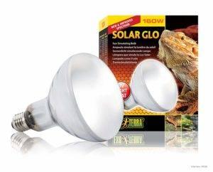 Bearded Dragon Heat Lamps Solar Glo