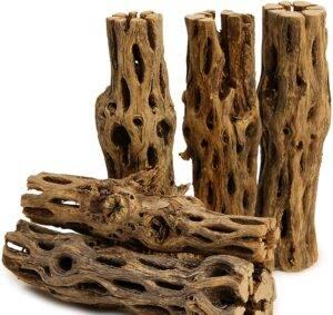 bearded dragon driftwood